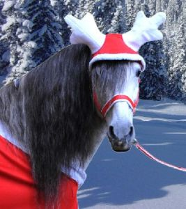 Ramure de renne CHRISTMAS