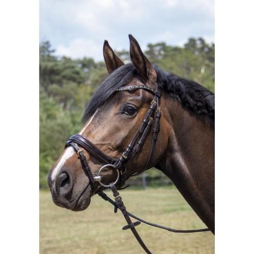 Bridon LEANA - Bridons d'équitation