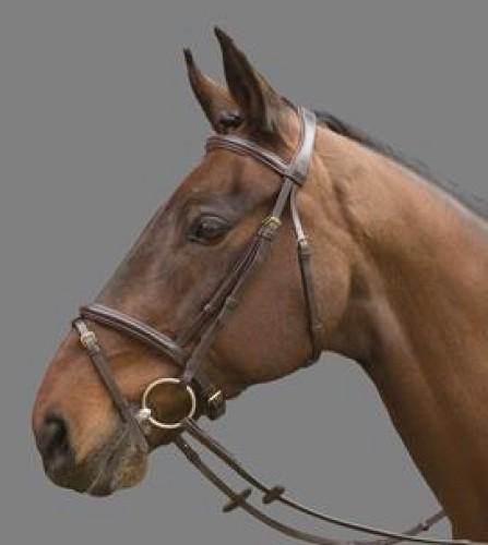 Bridon Mountain Horse CYRANO - Bridons d'équitation