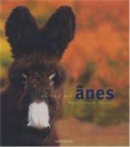 Portrait des ânes
