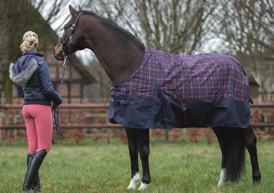 Hiver Couverture écurie couverture couverture de cheval 400 g 1200 la framboise