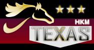 TEXAS - Le cavalier western